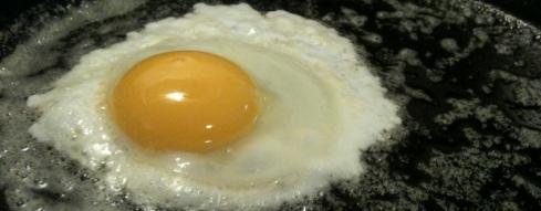 Egg3(fried)